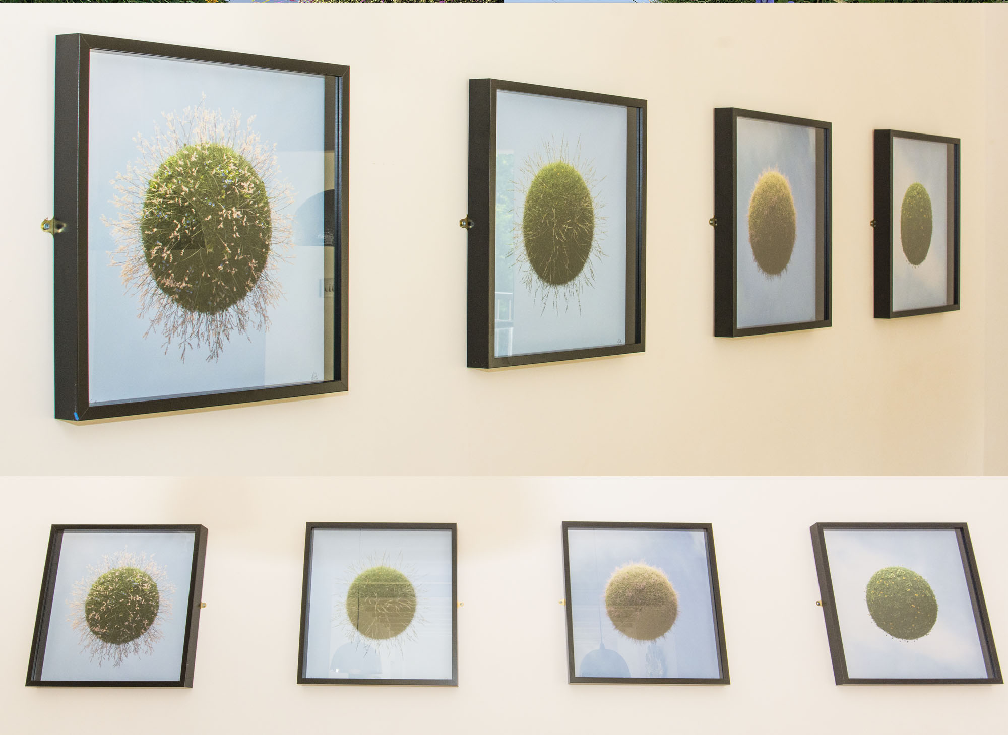 Grass Planets Framed